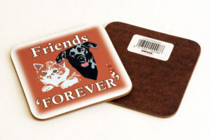 'Friends Forever' Square Coaster